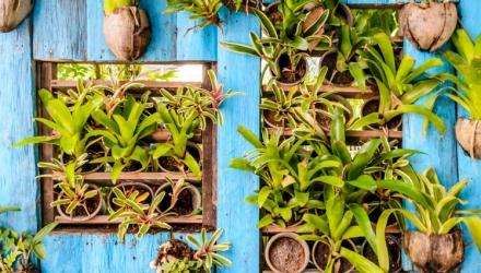 Urban Jungle: Vertikaler Garten für die Wohnung
